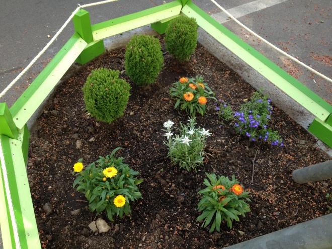 Baumscheibe mit grüner Reling und mehreren Pflanzen