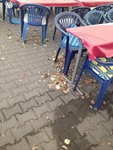 Blätter zwischen Fest-Tischen und Stühlen