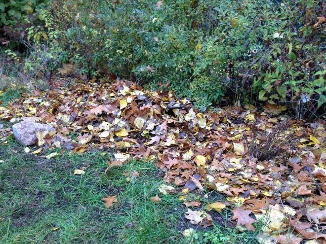 Blätterhaufen mit eingebautem Gerüst